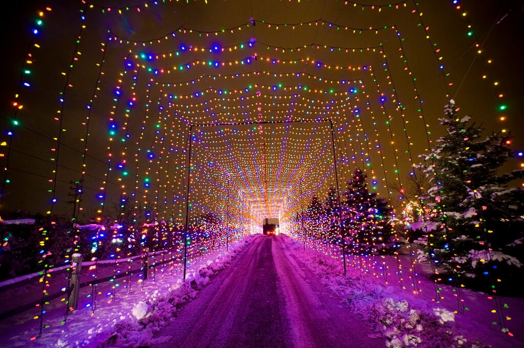 Country Springs Hotel Christmas Lights