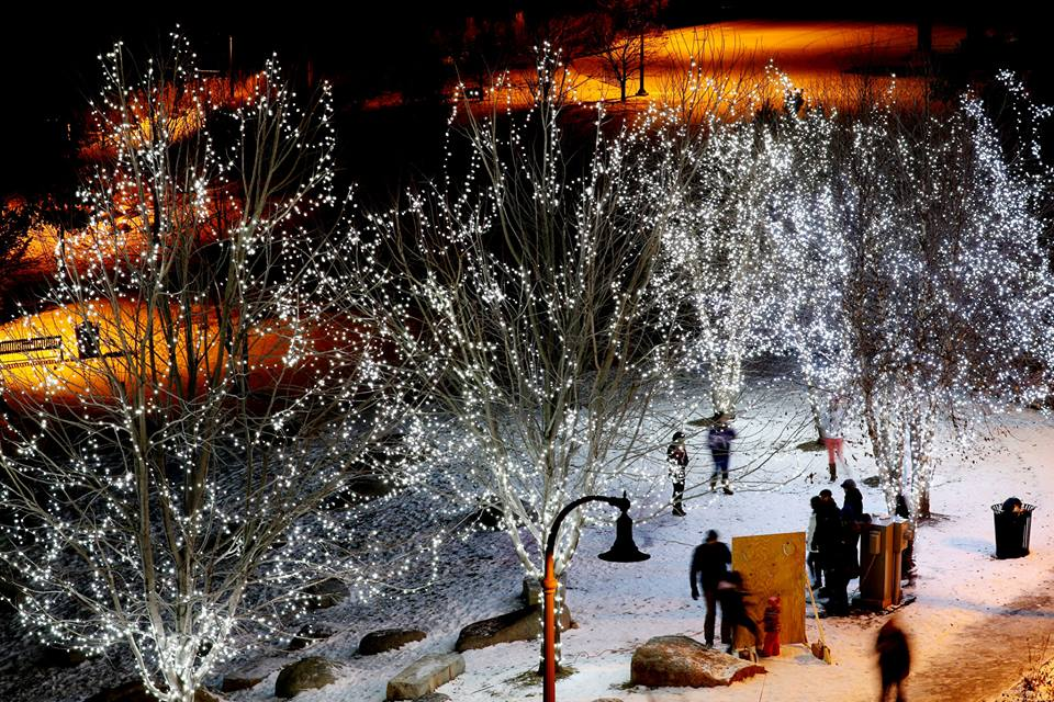 "Eau Claire's ""Let it Glow!"" Tree Lighting will take place Friday, Dec. 5 at Phoenix Park. [Photo by Dan Reiland]"
