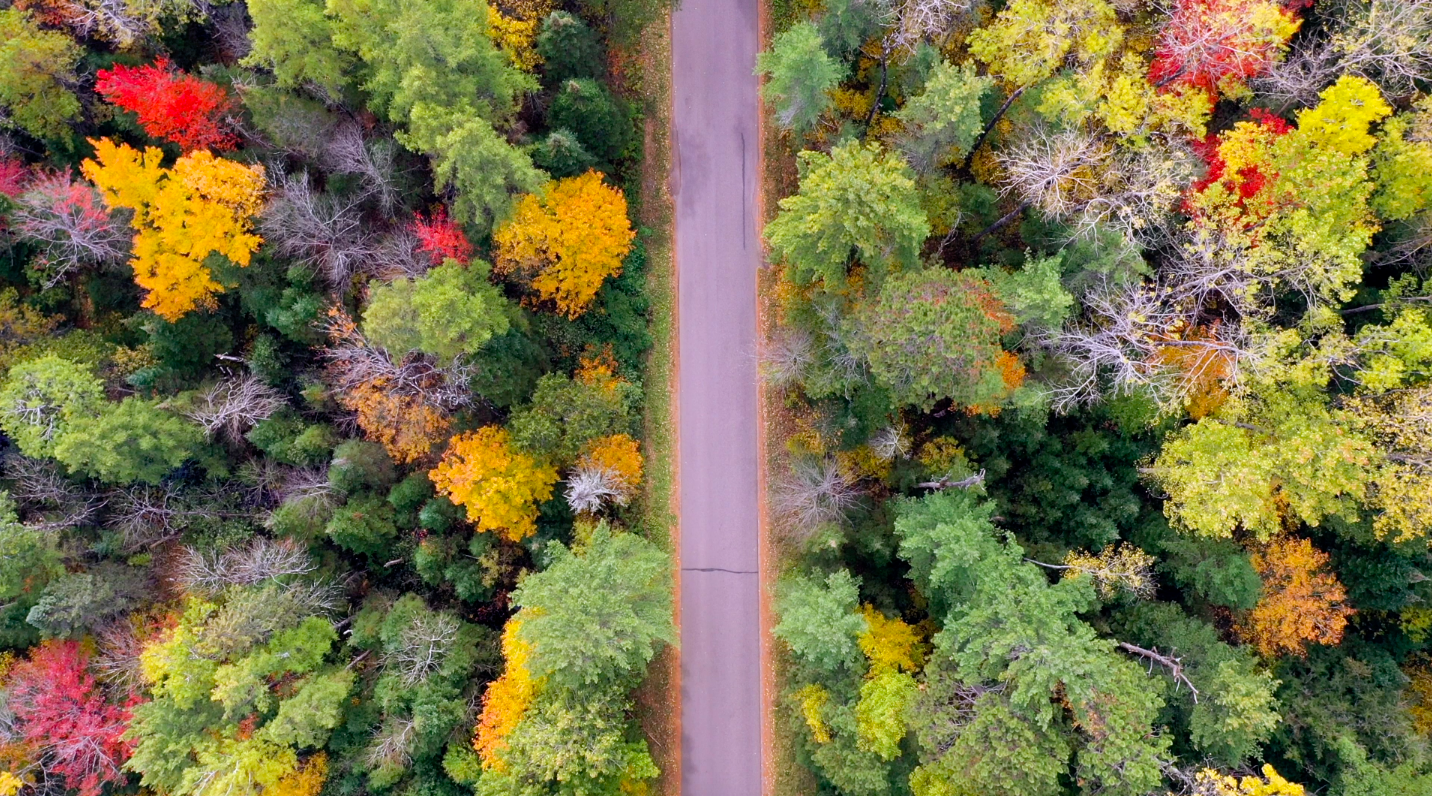 Already Missing Summer? Here are 5 Reasons Why Minocqua in the Fall is Actually Better!