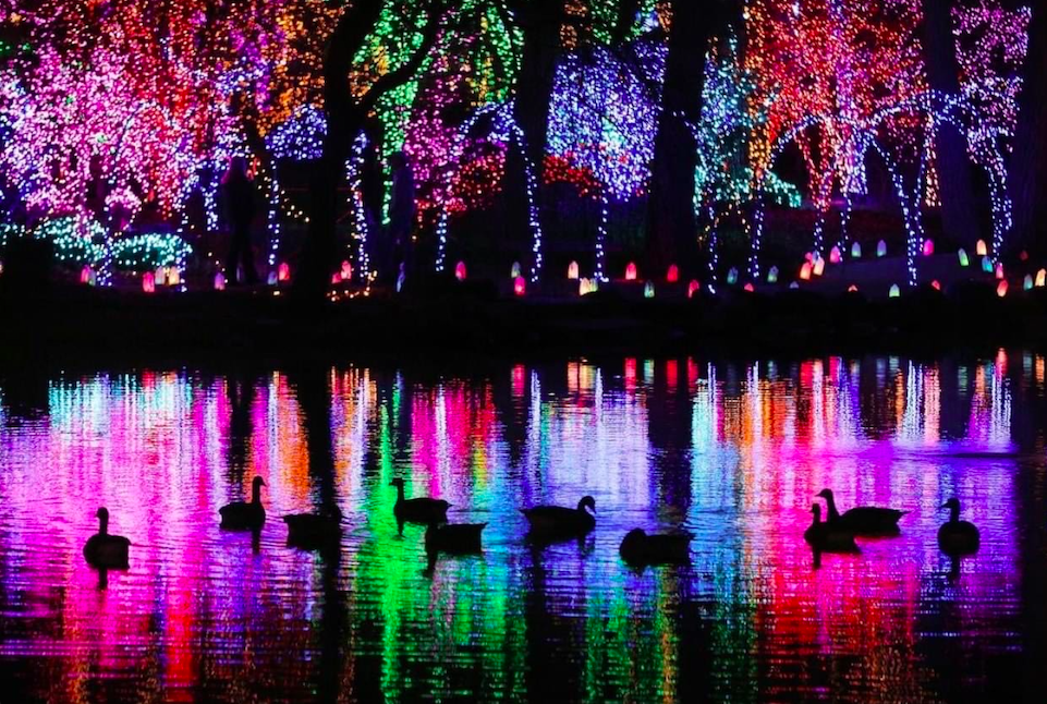 10 Must-See Holiday Light Shows in Wisconsin