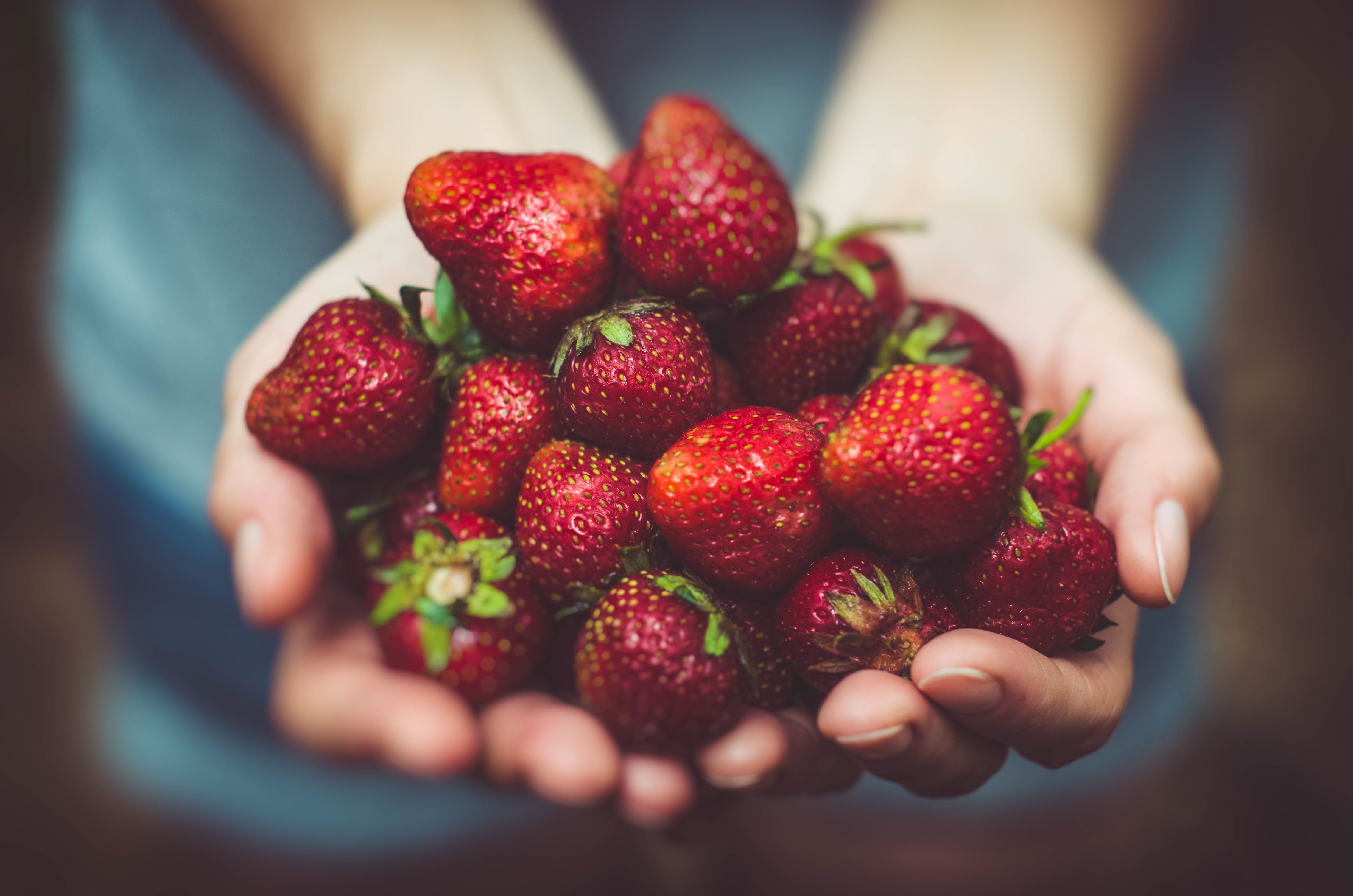 5 Pick-Your-Own Fruit Farms in Wisconsin