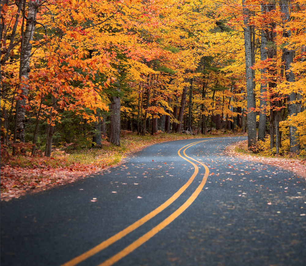 Where to Find Fall Colors in Southeast Wisconsin This Weekend!