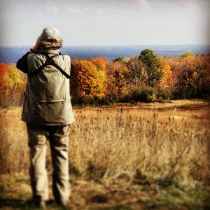 Birding at Marinette County's highest point: Thunder Mountain Park