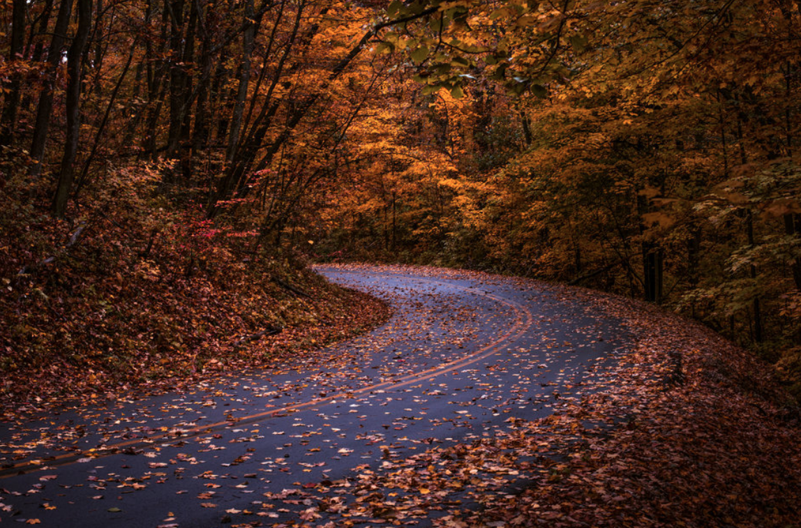11 Rustic Fall Drives in Wisconsin