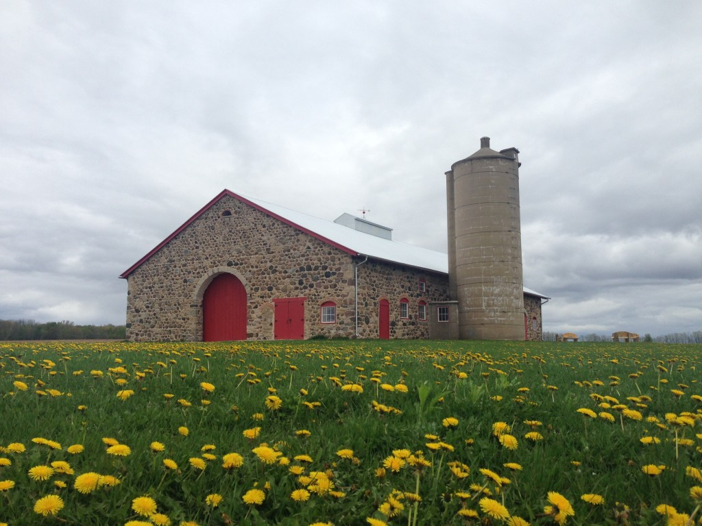 Chase Stone Barn will be featured in an episode of Discover Wisconsin featuring Oconto County