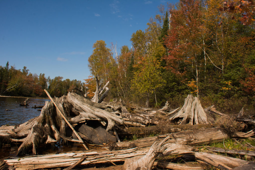 Photo by Forest Service, Eastern Region's photostream