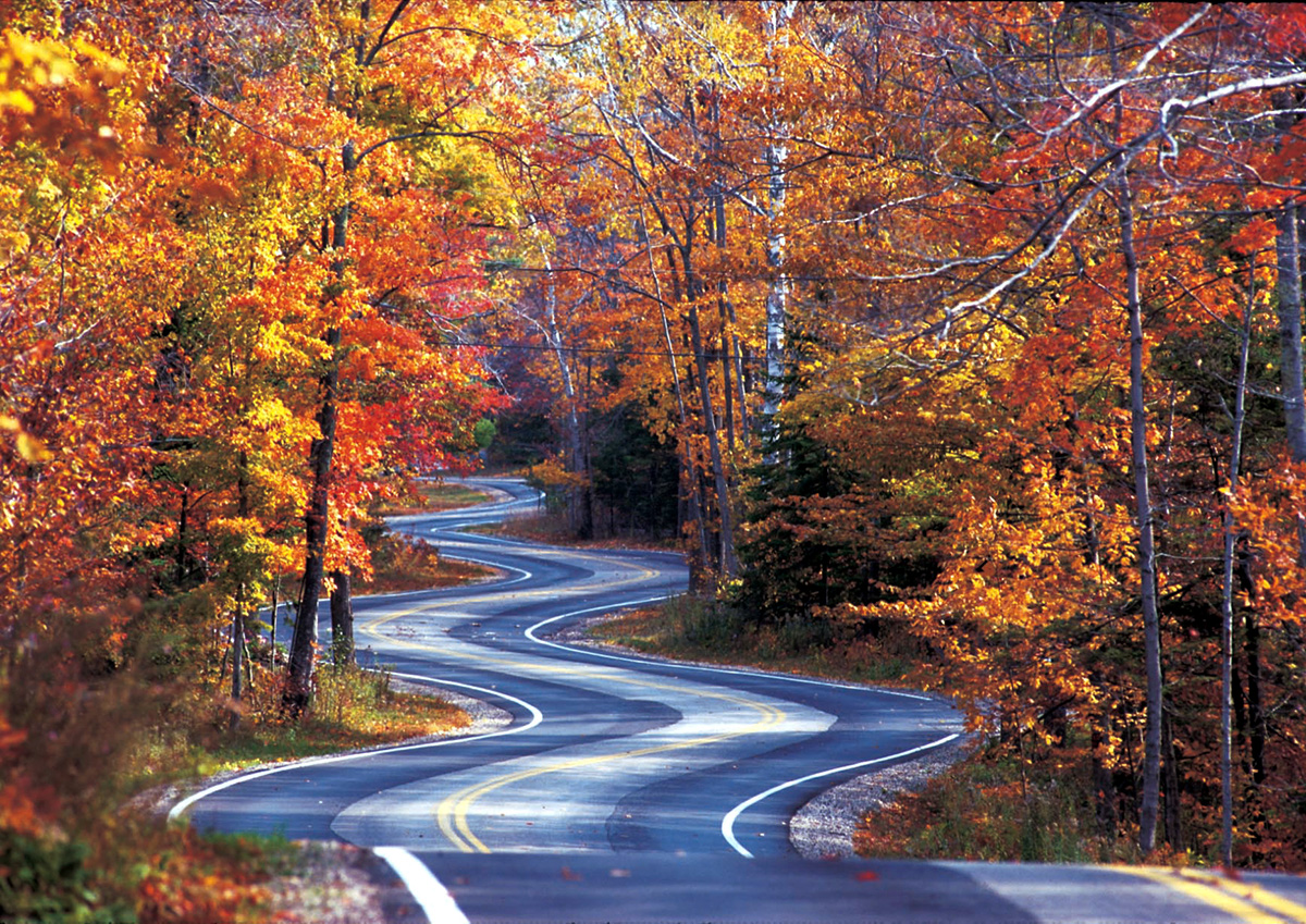 Best Road Trips for Fall Foliage in Wisconsin - The Bobber