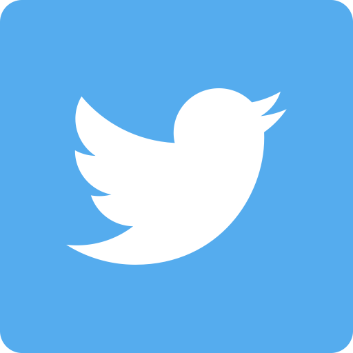 White Twitter Logo
